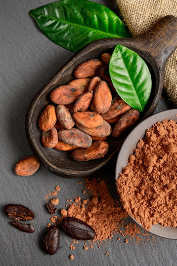 Nasiona kakaowca